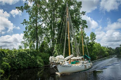 Chesapeake Dismal Swamp